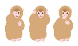 """【編集部インターンのCS調査日誌⑧】「三猿(見ざる・聞かざる・言わざる)」から考える、""""選ばれる""""接客のコツ"""